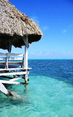 Pelican Reef Villas Resort: View from Pelican Reef Pier