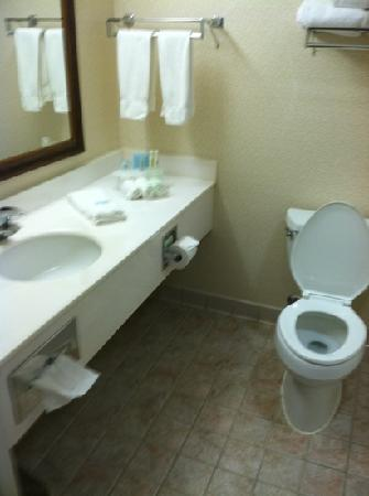 Holiday Inn Express Prince Frederick: very clean and working bathroom