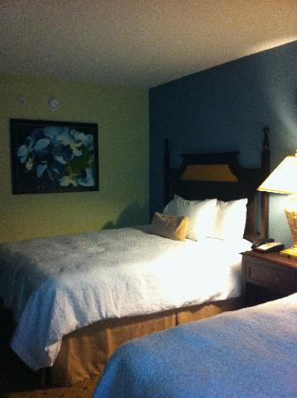 Hampton Inn Murrells Inlet/Myrtle Beach Area: The bedroom