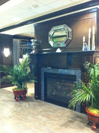 Hampton Inn Murrells Inlet/Myrtle Beach Area: fireplace in lobby