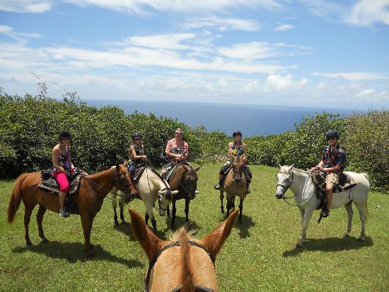 Maui Stables : View overlooking the ocean