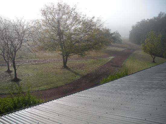 Carriages Boutique Hotel & Vineyard: view from window in the morning mist