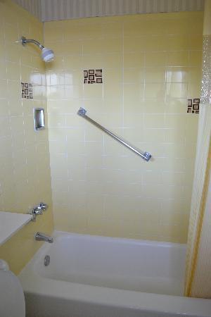 Studio City Court Yard Hotel: La baignoire