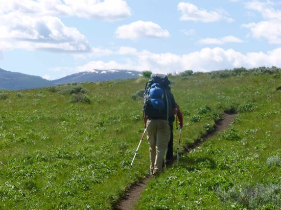 The Wildland Trekking Company - Day Hikes : Hiking along Blacktail Creek