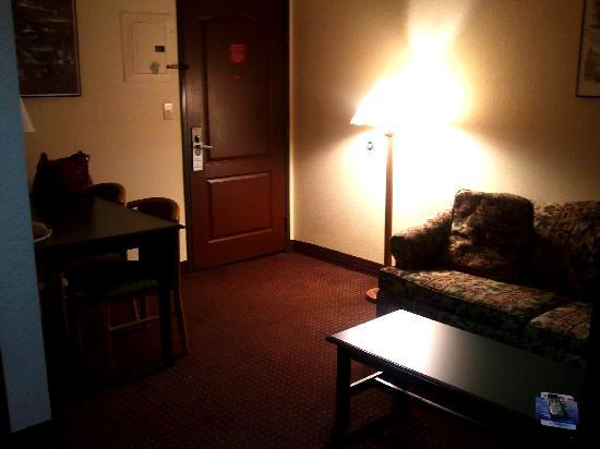 The Suites Hotel in Canal Park : Suite 222  VERY DIM!!