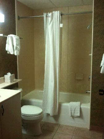 The Suites Hotel in Canal Park: Bathroom virtually identical in both suite 225 and 222