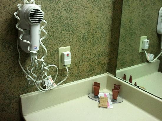 The Suites Hotel in Canal Park : Hair dryer and nice quality shampoo etc, plus thick nice towels