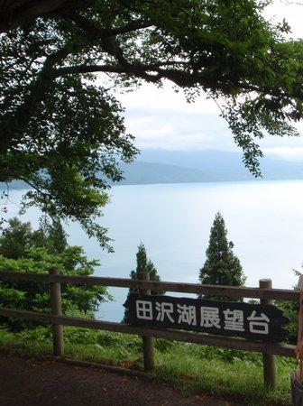 Katamaeyama Forest Park