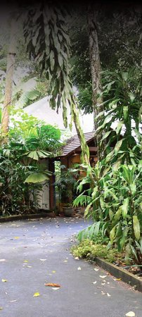Experience the Heritage Lodge & Spa 'in the Daintree'