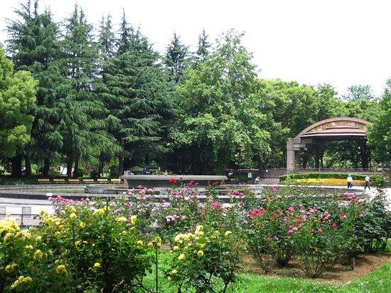 Hibiyakoen, ญี่ปุ่น: バラ園