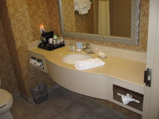 Hampton Inn & Suites Agoura Hills : Bathroom