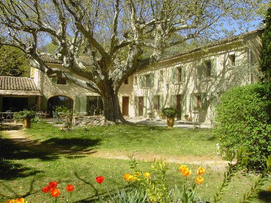 Photo of Le Mas de la Fontaine Sarrians