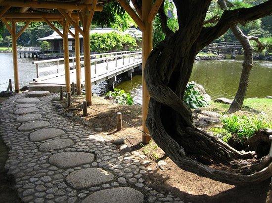 Сады Хама Рикью: 散歩道