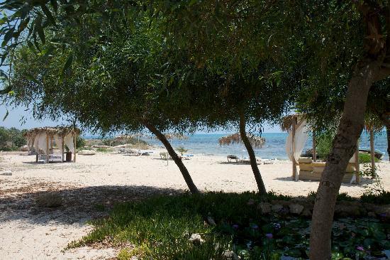 Thalassines Beach Villas Hotel: Hotel beach