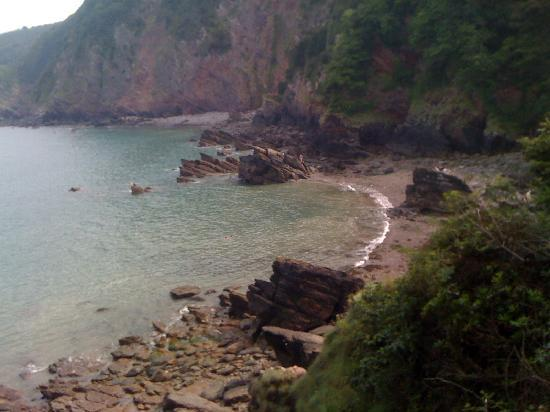 The Old Rectory Hotel: woody bay