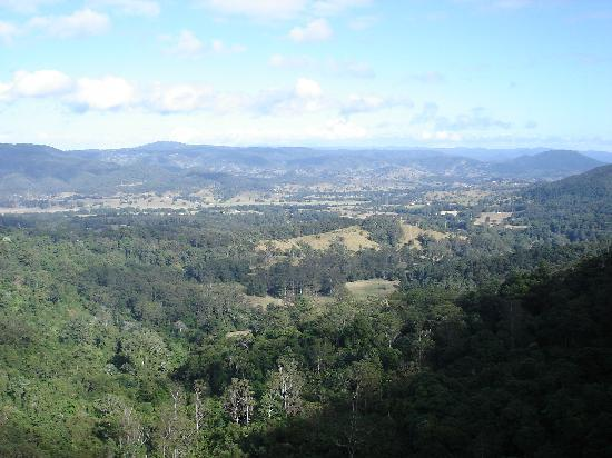 Mapleton Falls Accommodation : The Lookout
