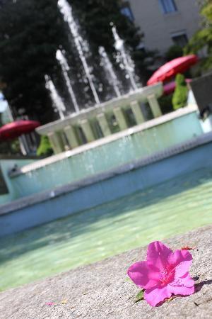 Hotel Fontana: La nostra bellissima fontana