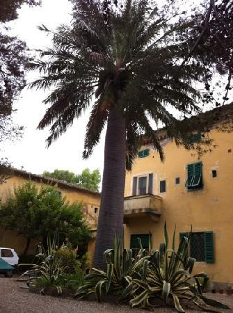 Talamone, Italia: giardino