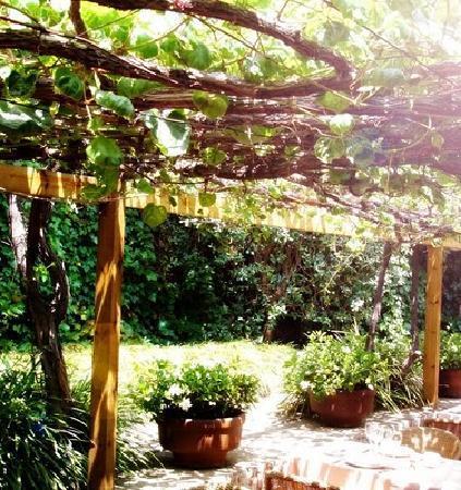 La Balsa: garden