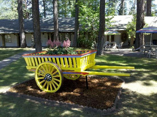 Ranchito Motel: Flower Cart