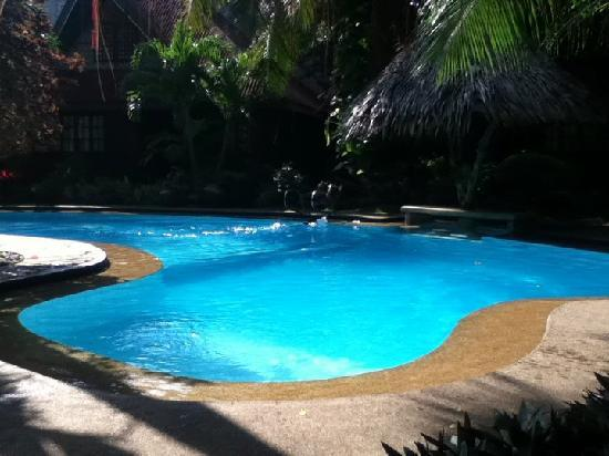Alona Tropical Beach Resort: Part of the pool