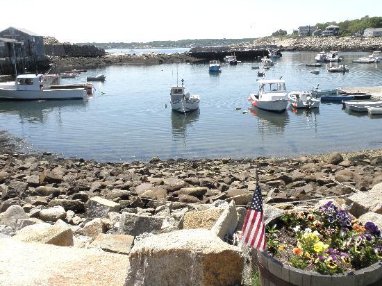 Mooring Stone Guest House: Rockport Harbour