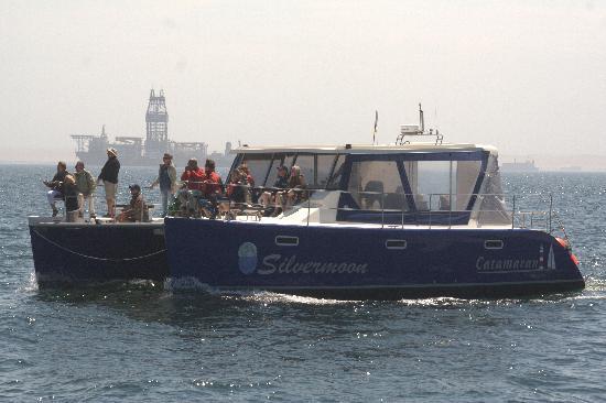 Catamaran Charters: Silvermoon - Motorised Catamaran