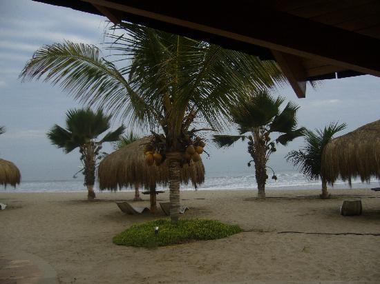 Punta Sal Suites & Bungalows Resort: La playa desde la suite