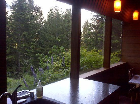 Deep Forest Cabins at Mt. Rainier: View from Kitchen