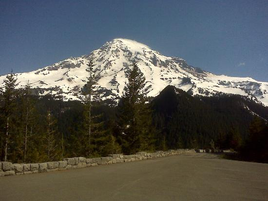 Ashford, WA: Mt. Rainier July 1st 2011