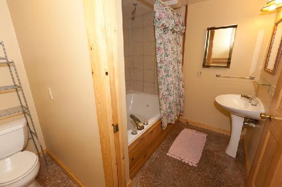 Door County Cottages: Lincoln: Bathroom is comfortable with tub/shower combo.