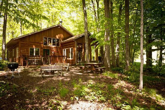 Door County Cottages: The Lincoln is a comfortably appointed log cabin set in a private woods.