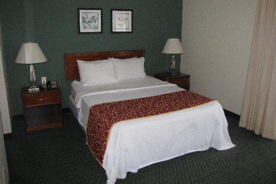 Studio 6 Greensboro: bed