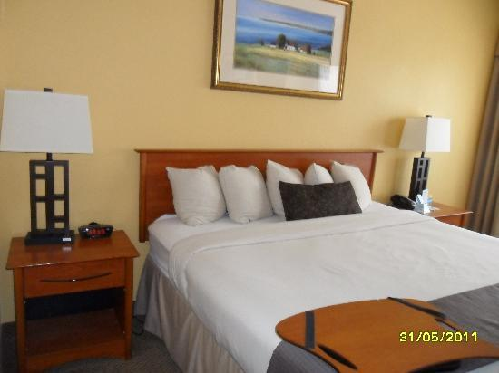 Days Inn Washington DC/Connecticut Avenue: the bed is very large and good