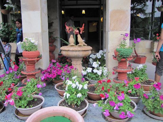 Shervani Hilltop: Hotel Reception