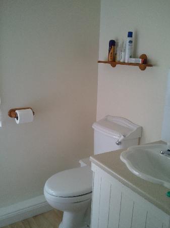 Lee House: en suite shower