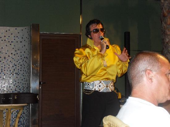Secret Fountain Roof Bar Garden : Elvis (Garry Lee James0
