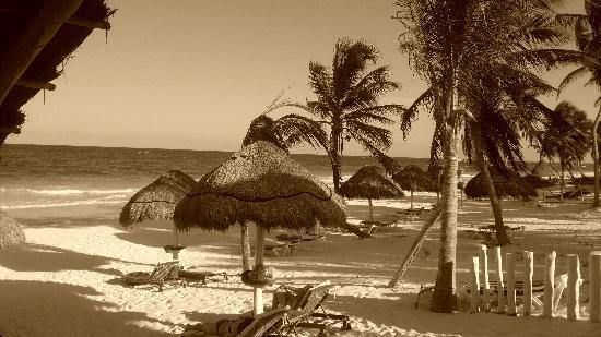Villa Las Estrellas: PARADISE