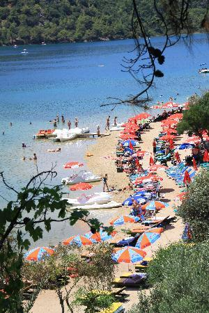Ova Resort Hotel : The private beach