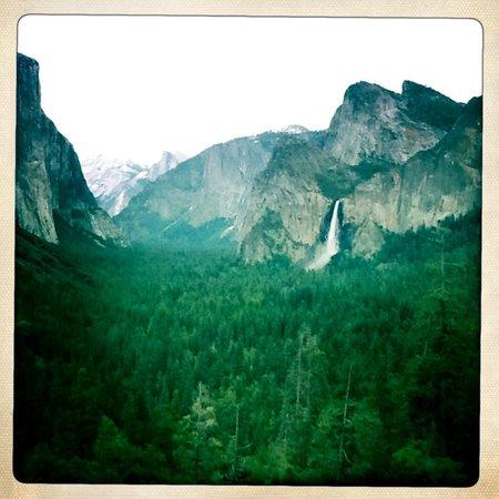 Califun: A day in Beautiful Yosemite Park with Cali'fun