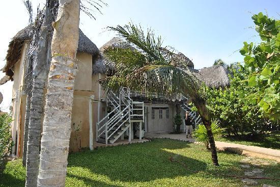Villa Las Estrellas: JARDIN ENTRADA
