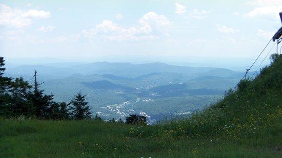 Healdville Trail