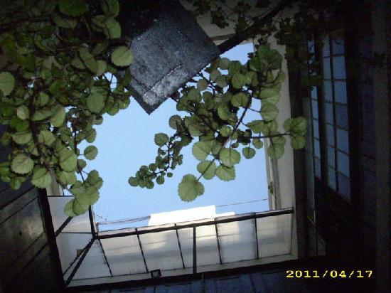 ChillHouse: Patio interior