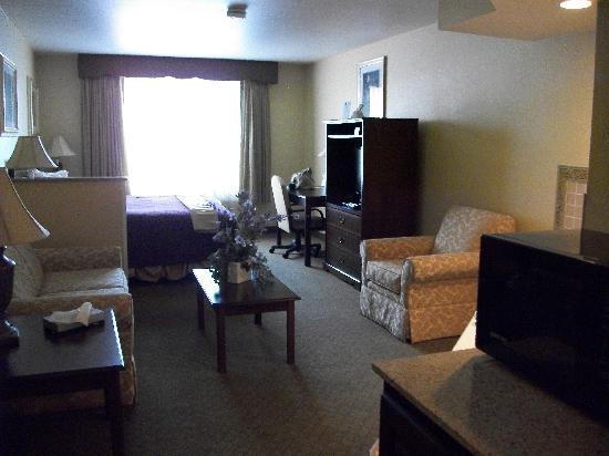 Best Western Penn-Ohio Inn & Suites : Looking toward the window.
