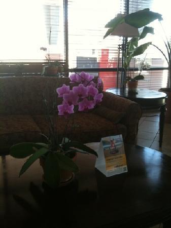 Comfort Suites Longmont: Hotel lobby
