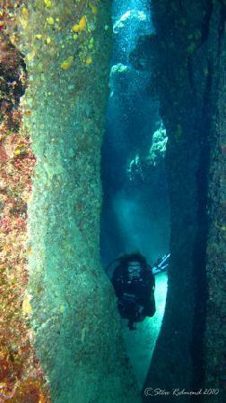 Tranquillity Island Resort & Dive Base: Tranquillity 172