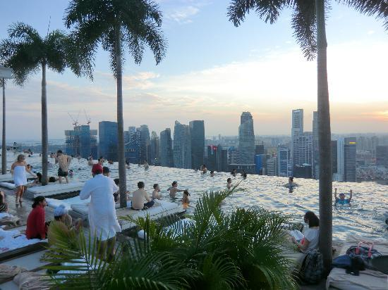 Marina Bay Sands: Swimming Pool