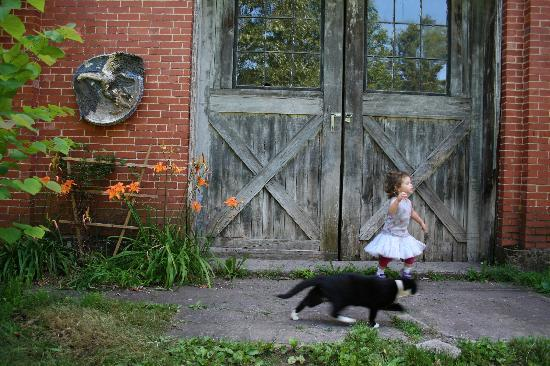 Bloomsburg, Pensylwania: My daughter and kitty...