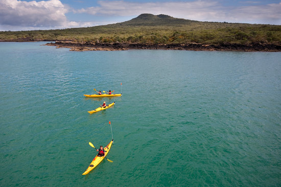 Auckland Sea Kayaks: Summit tour - Rangitoto