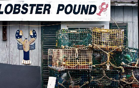 Mount Desert Island: Lobster traps
